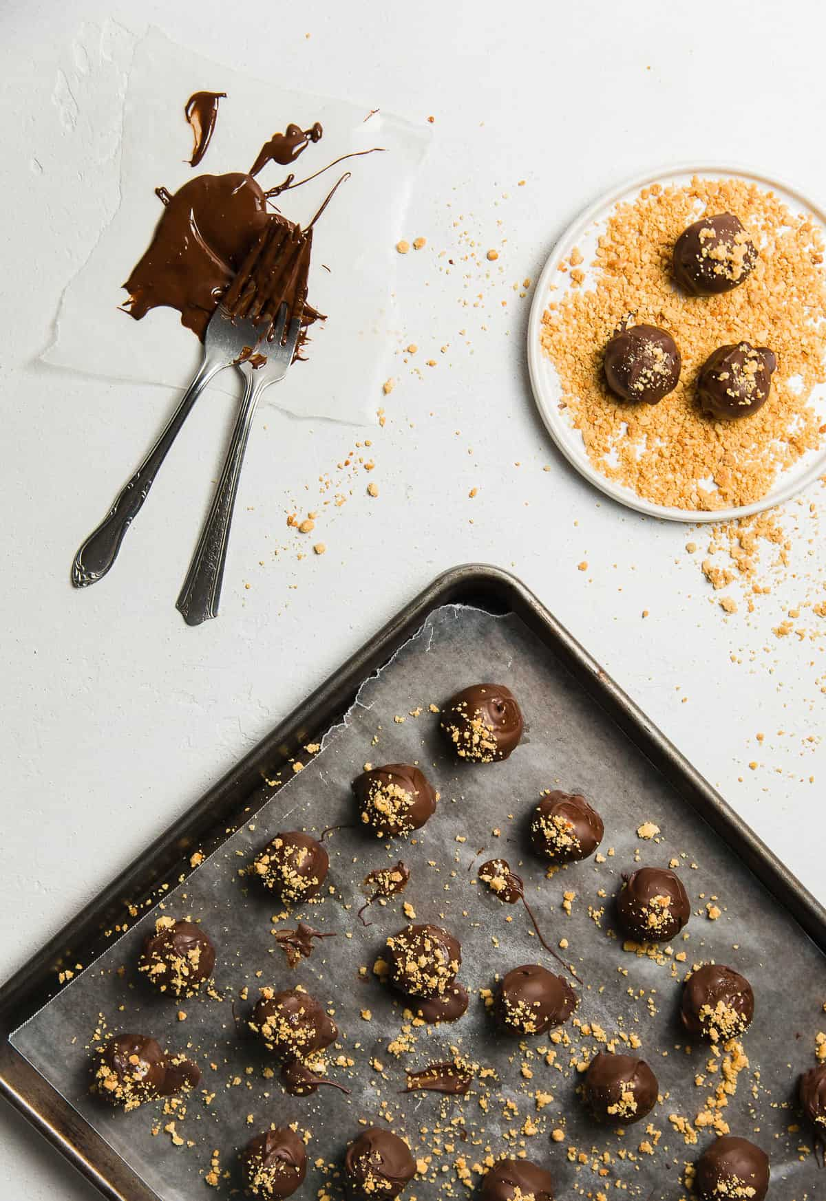 Chocolate Peanut Butter Delights, plant based, vegan, vegetarian, whole food plant based, gluten free, recipe, wfpb, healthy, healthy vegan, oil free, no refined sugar, no oil, refined sugar free, dairy free, dinner party, entertaining, dessert, sweets, treats