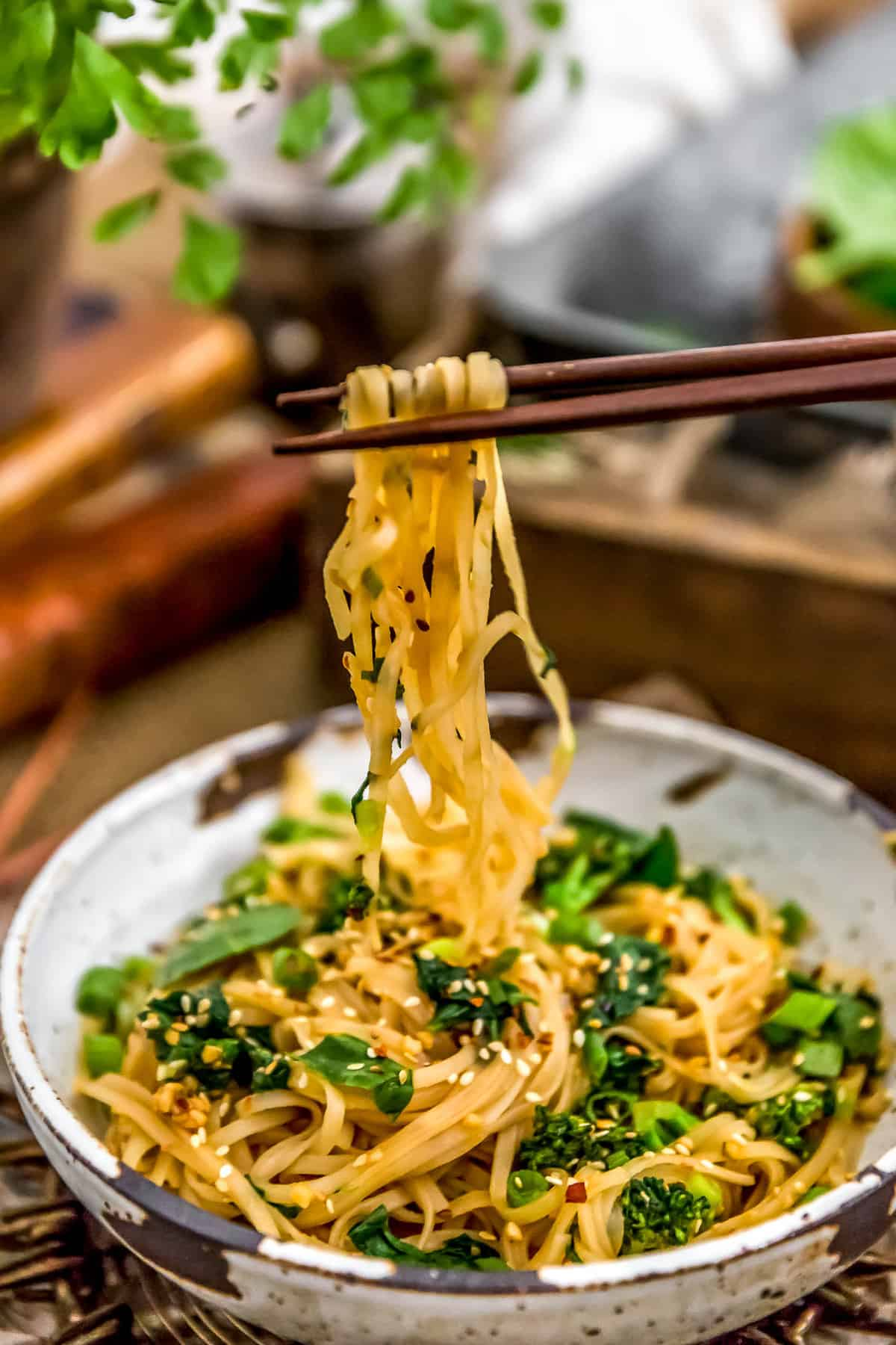 Oil Free Garlic Sticky Noodles with chopsticks