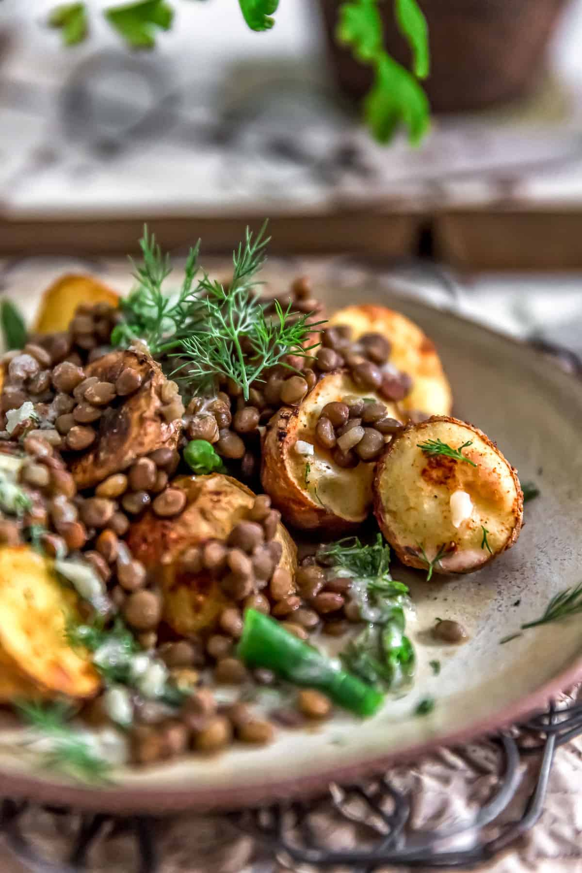 Close up of Roasted Potatoes with Seasoned Lentils and Dill Sauce