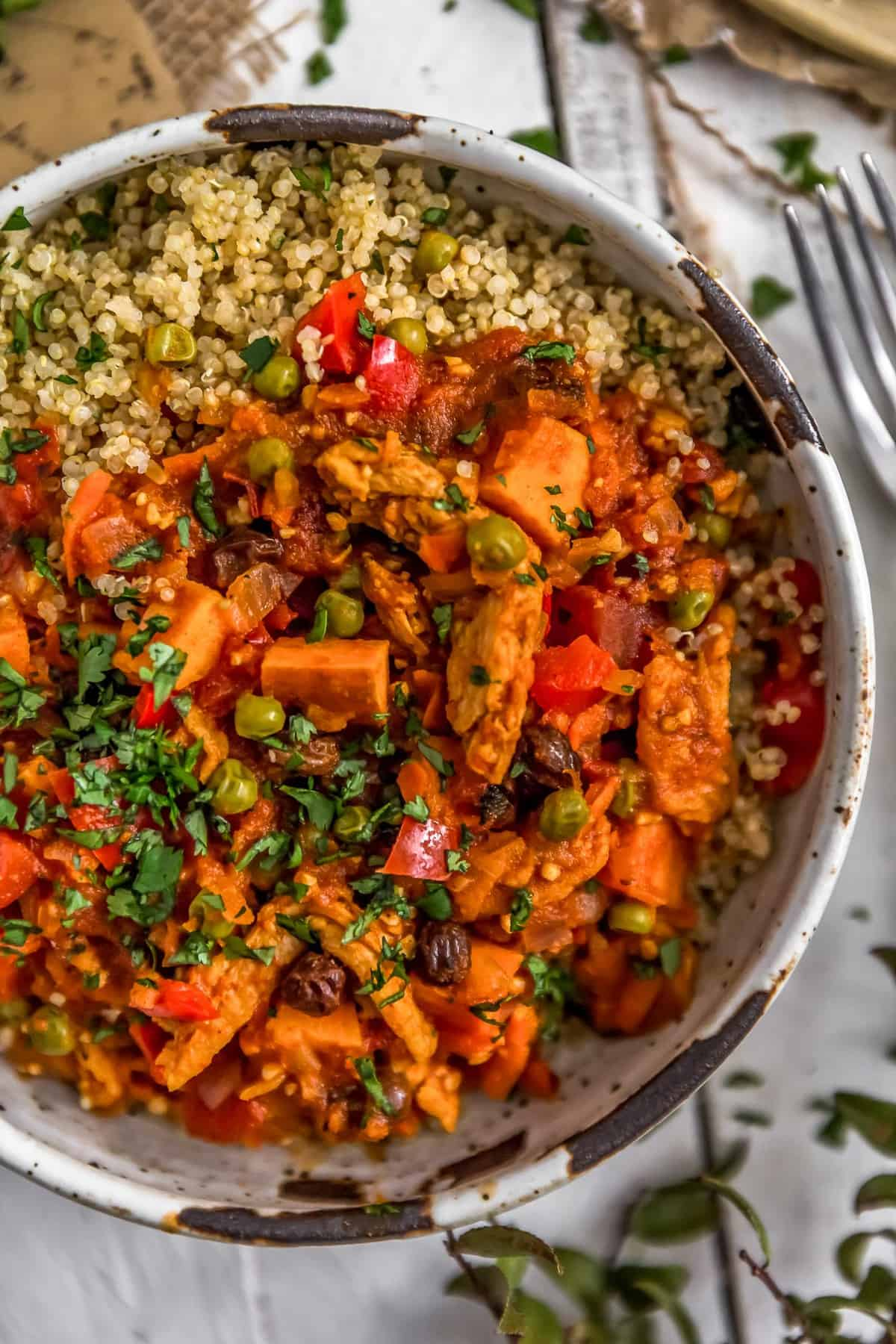 Bowl of Moroccan Soy Curl Stew