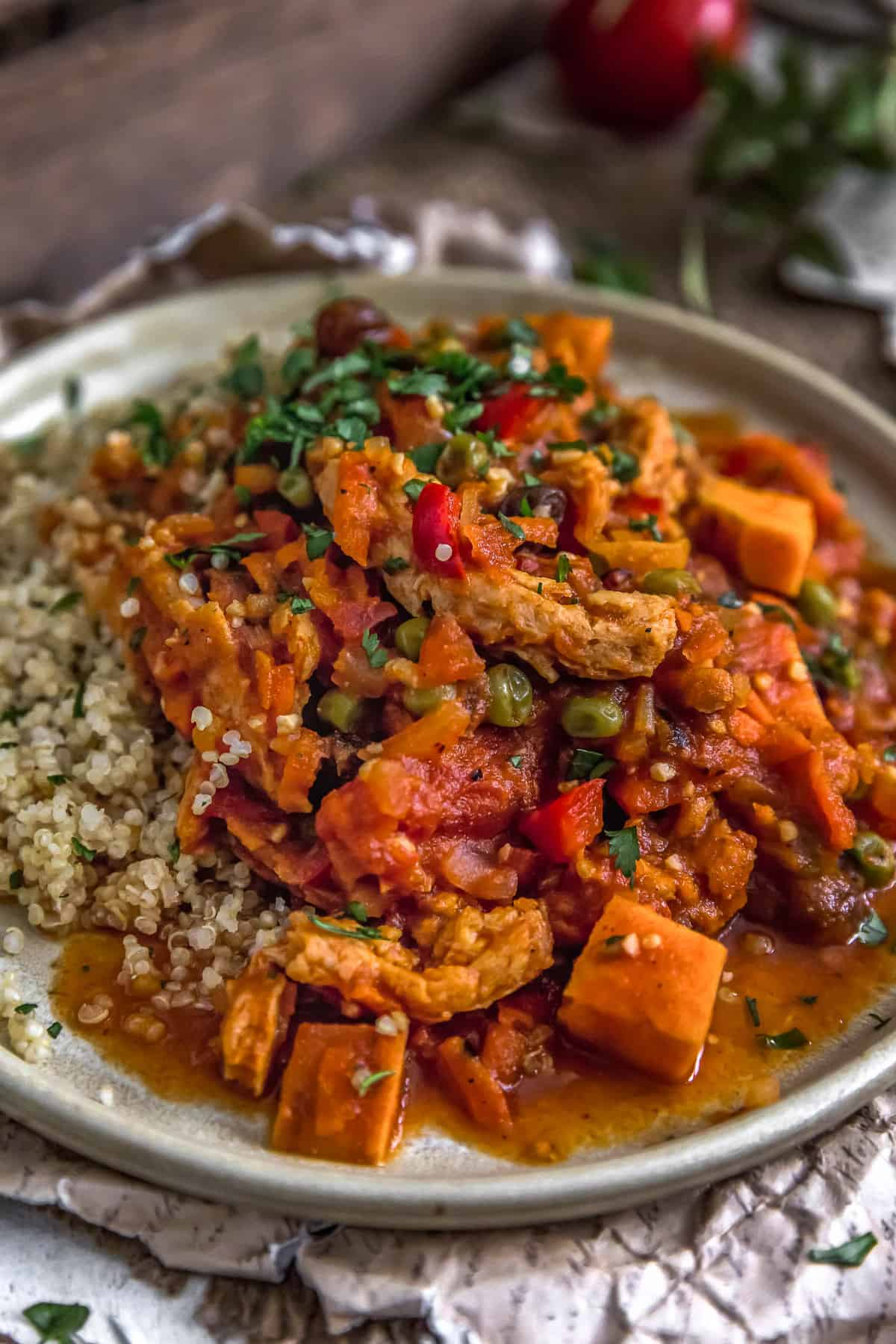 Close up of Moroccan Soy Curl Stew