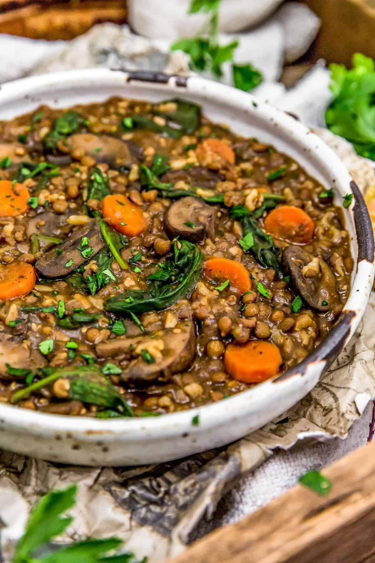 Close up of French Lentil Rice Mushroom Stew