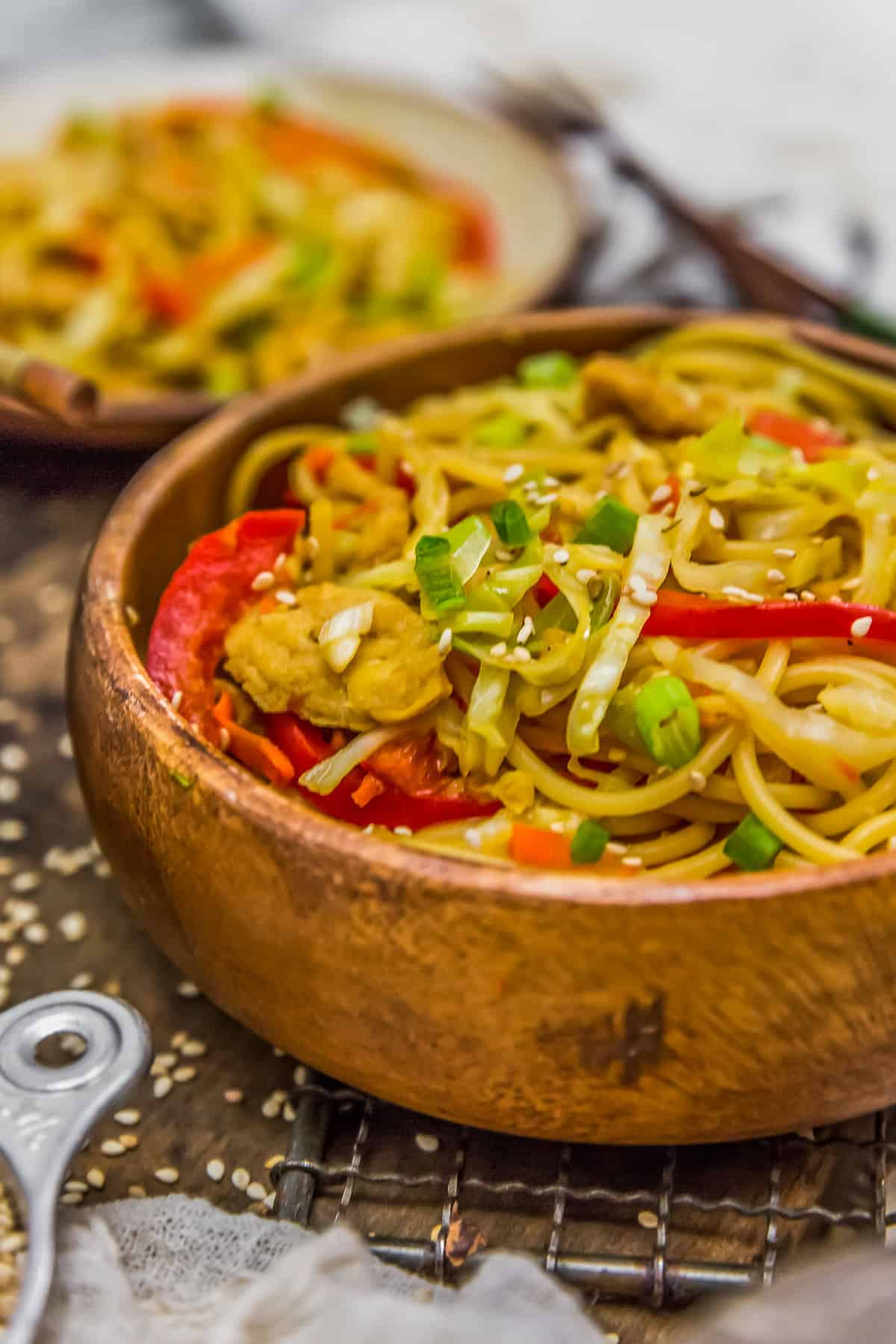 Close up of Vegetable Chow Mein