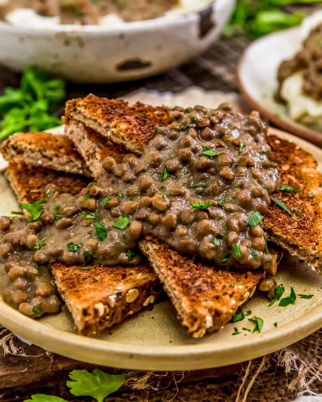 "Vegan ""Hamburger"" Gravy (SOS) over toast"