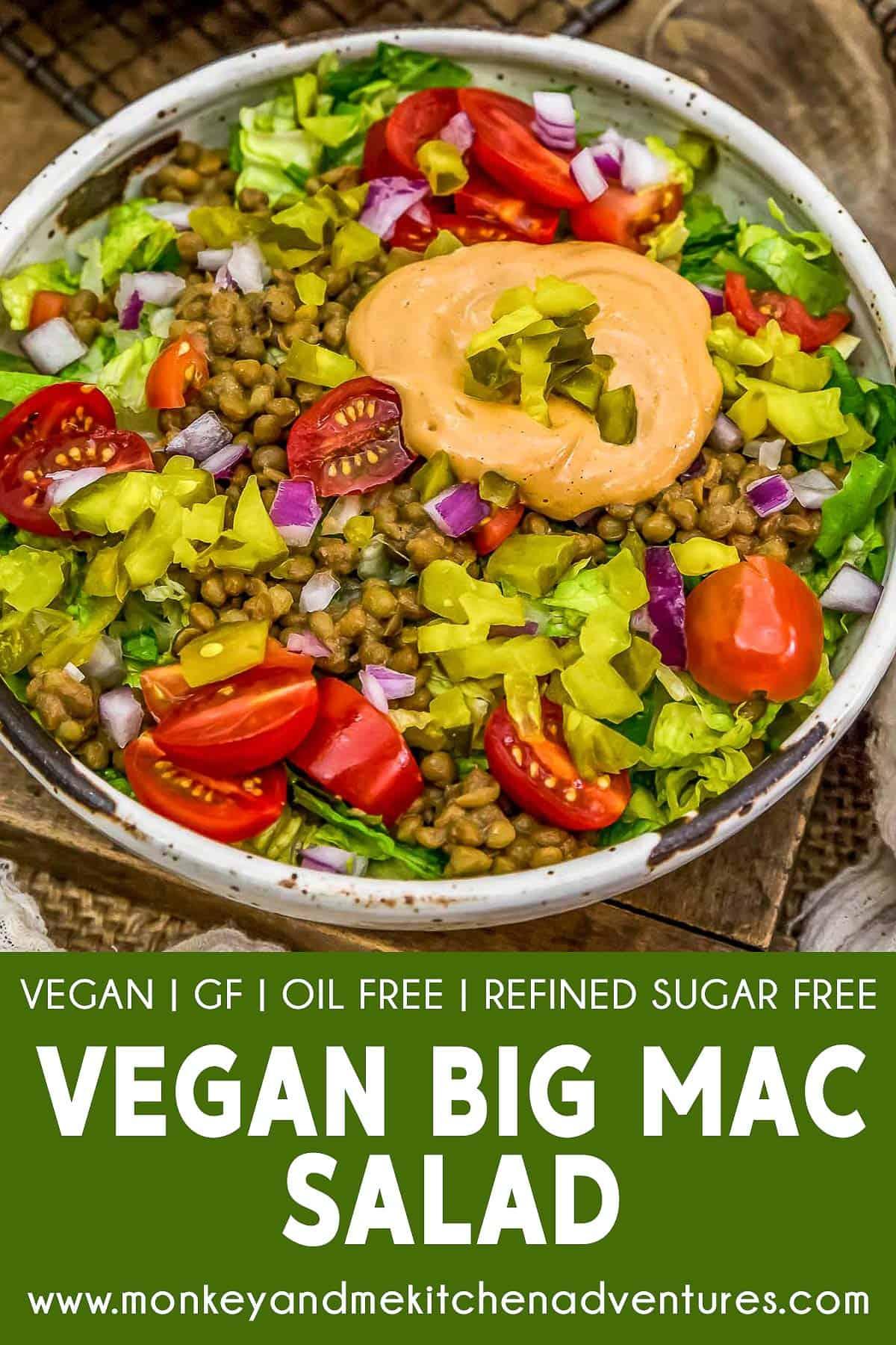 Vegan Big Mac Salad with Text Description