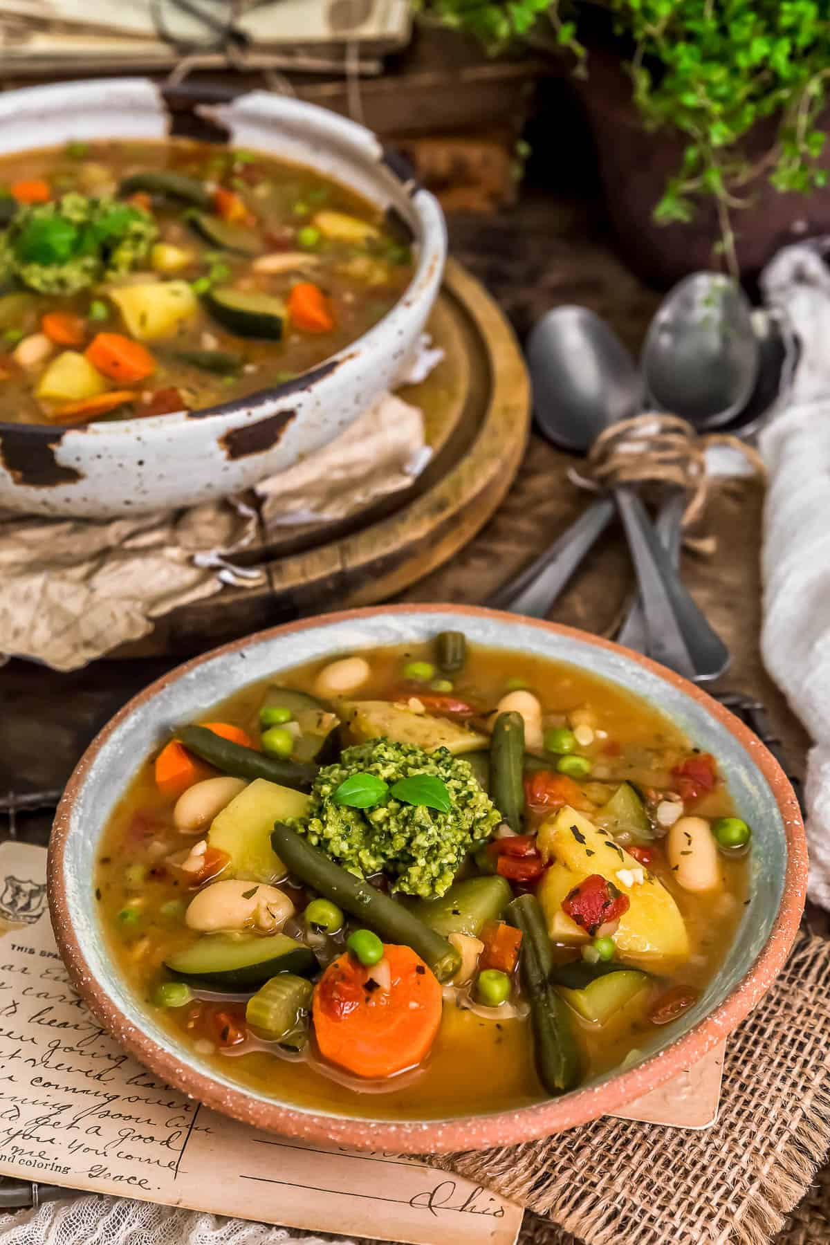 Served French Vegetable Soup