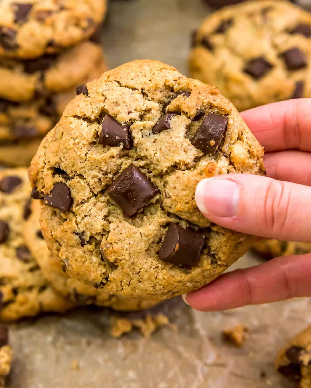 Eating a Vegan Jumbo Chocolate Chip Walnut Cookie