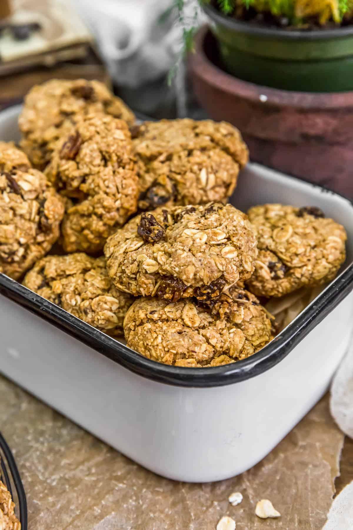 Tin of Vegan Crispy Oatmeal Cookies